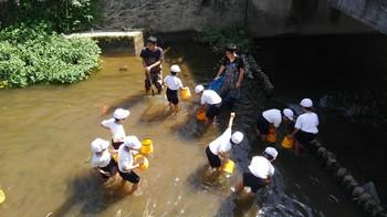 2016年9月23日水辺の教室(西田河)_6359.jpg